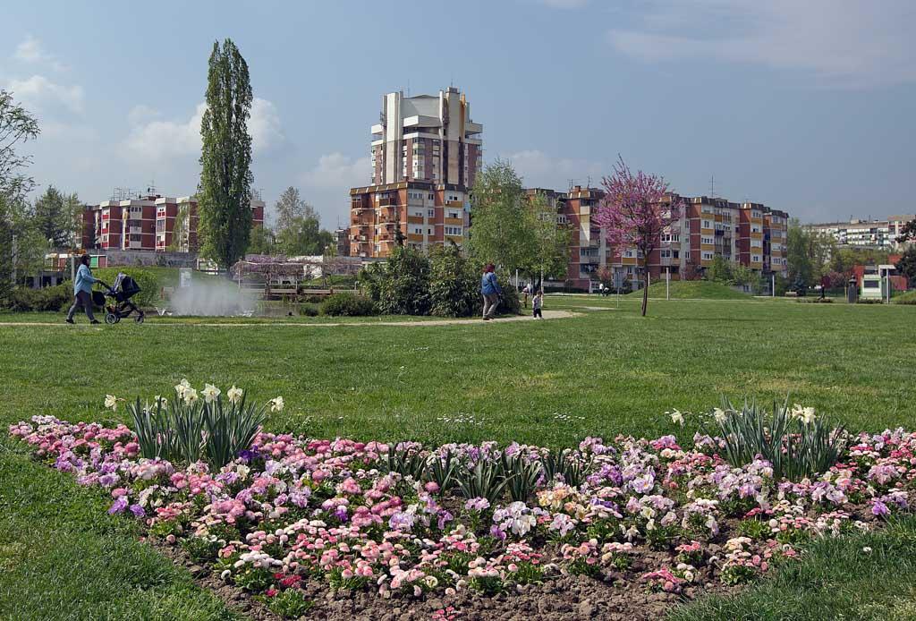 cvijece-Velika-Gorica-14.jpg