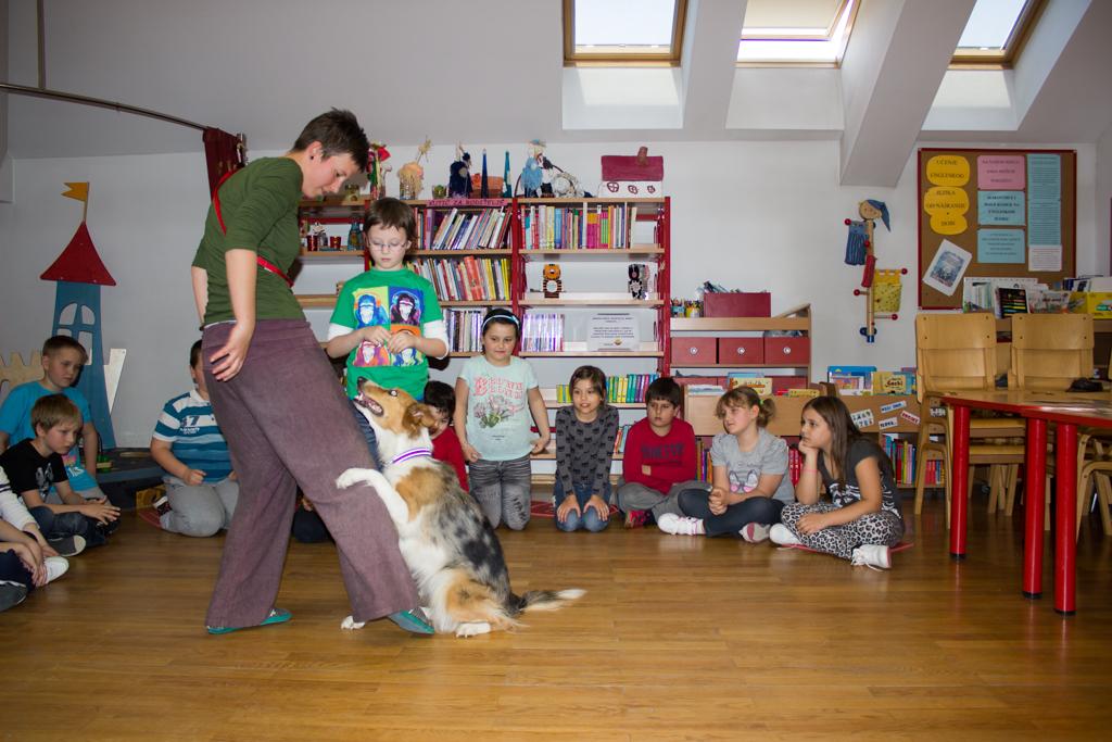 psi, djeca, edukacija, knjiznica (15)