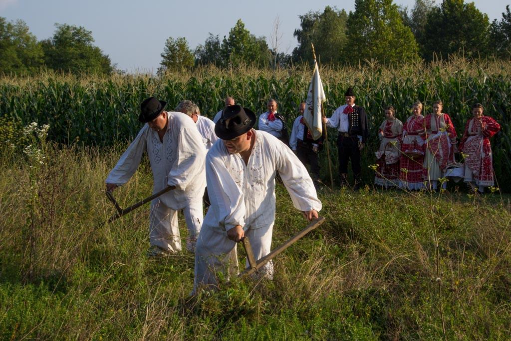 kosci-za-kosce-konj-posavac-etno1-13.jpg