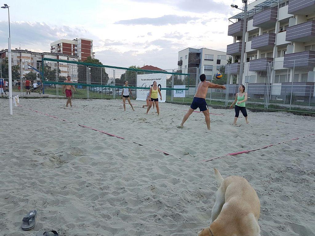 Odbojka na pijesku, teren (4)
