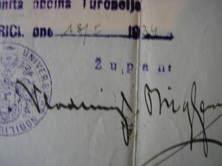 Potpis Vladimira pl. Brigljevića (župan 1932.-1935.), Izvor: Slavko pl. Stepanić